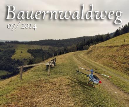 Bauernwaldweg