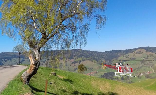 Ehrsberg