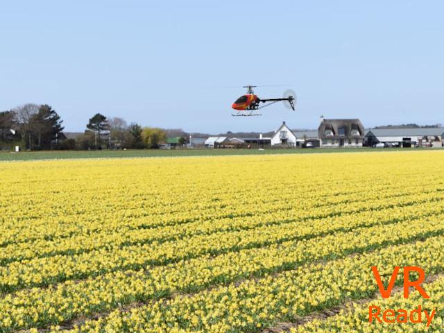 FlowerFields-Noordwijk