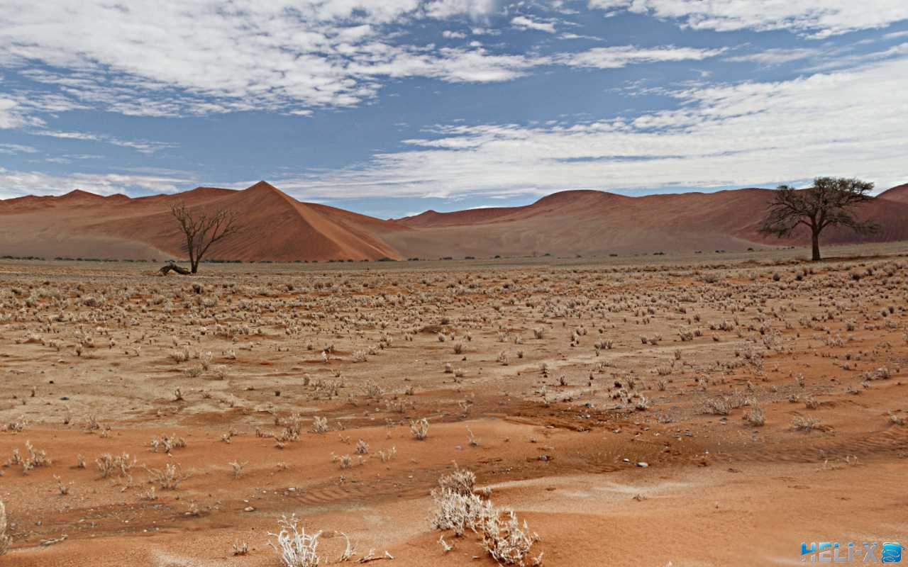 Dune45.jpg