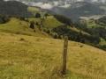 Bauernwaldweg.jpg
