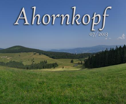 Ahornkopf