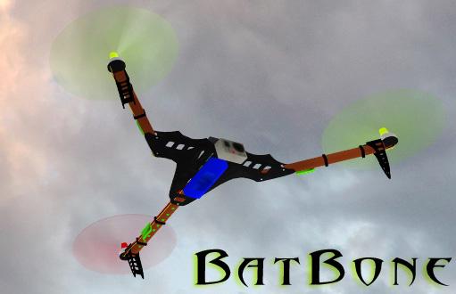 BatBone